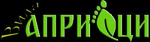 logo-villa-apriltsi_big